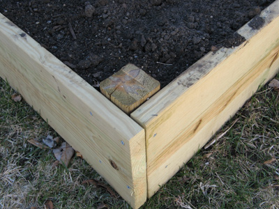 Top off with compost